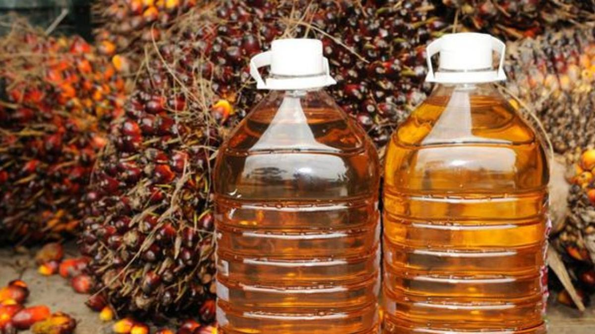 tren-positif-ekspor-minyak-kelapa-sawit-bakal-berlanjut