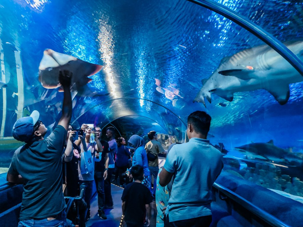 5.-Tips-for-Visiting-Aquaria-KLCC-Kuala-Lumpur-and-Review-1024×768-2