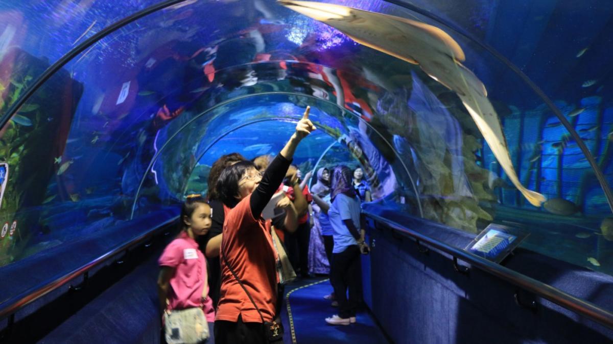 aquaria-klcc-ticket_e5943a31c32de691ca66261450efca04a1d5075f