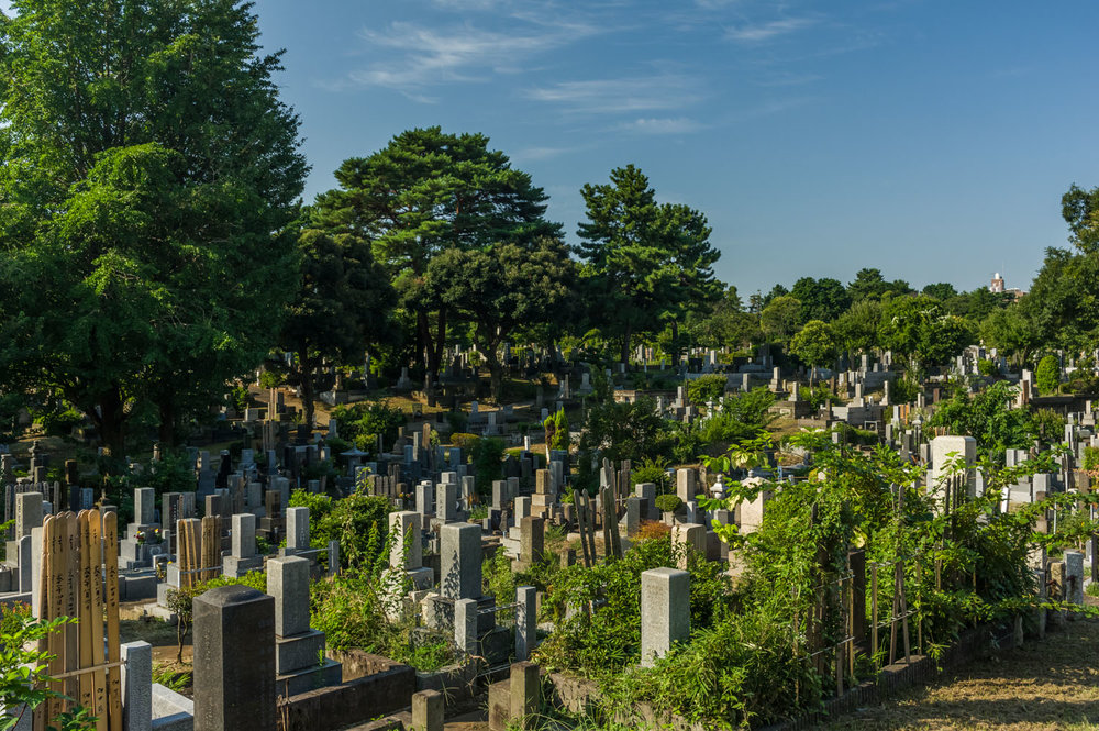 Aoyama+cemetery