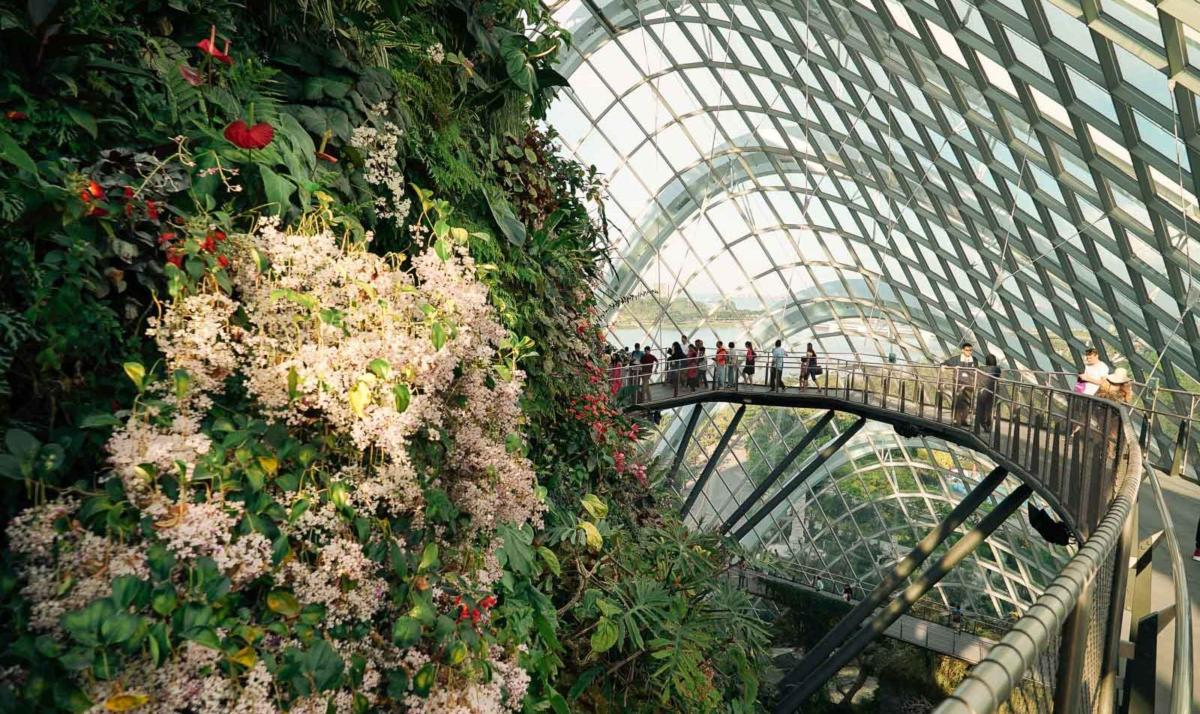 Cloud_forest_Mountain_gardens_by_the_bay