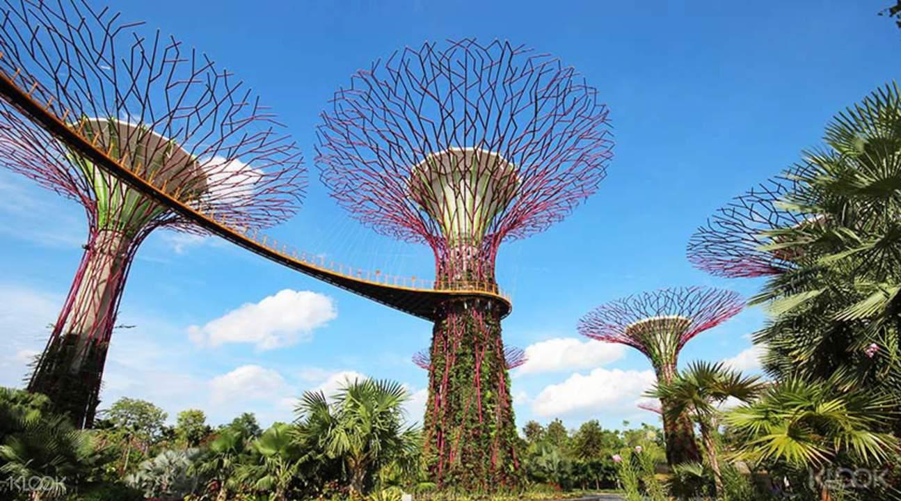 GardensbytheBayTicketinSingapore(DirectEntry)