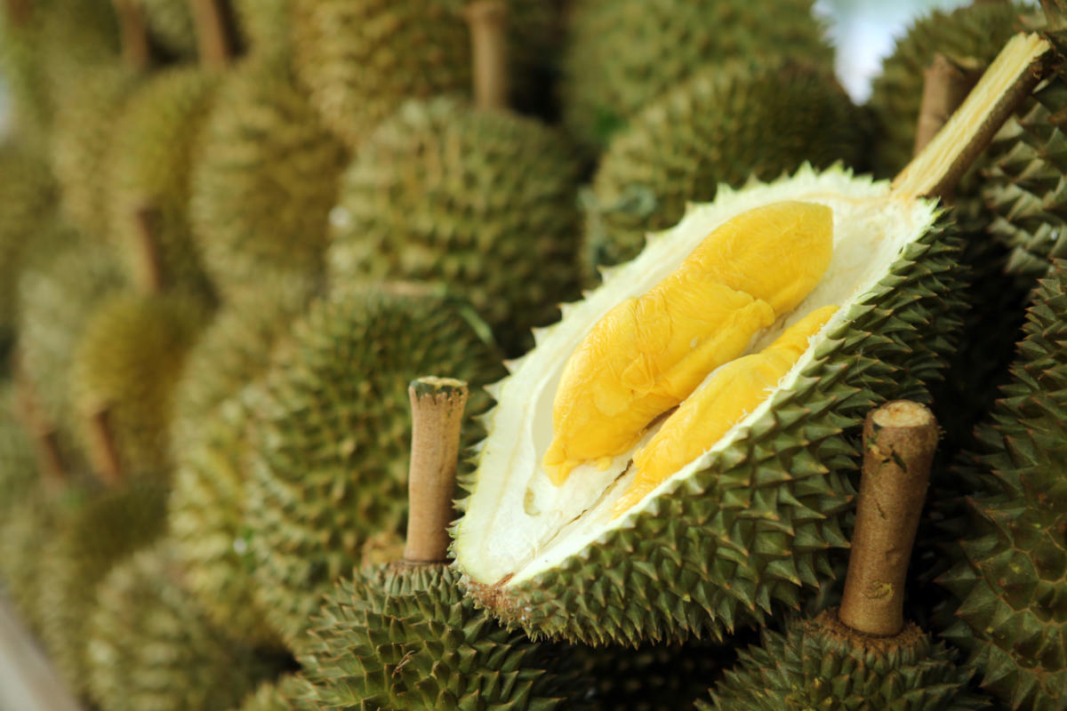 榴梿(Durian)。
