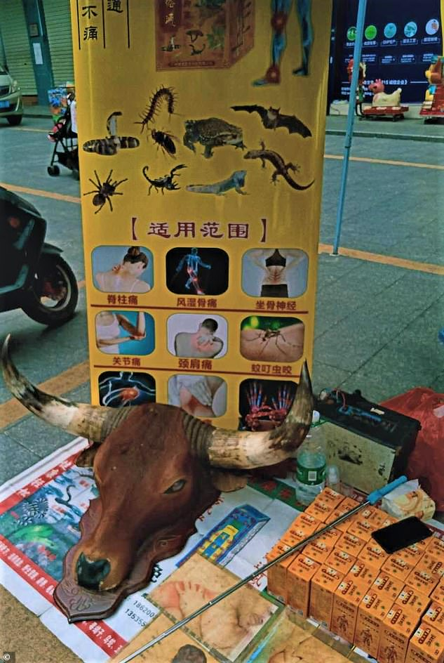 26533774-8163761-A_traditional_medicine_stall_at_Dongguan_market_in_southern_Chin-a-2_1585443805365