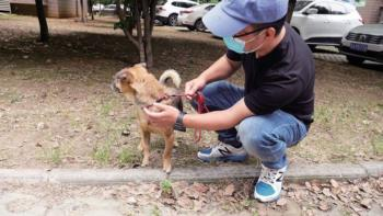 0_PAY-AsiaWire-WuhanPooch-06