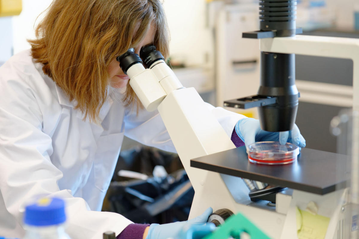 Pasteur Institute Of Lille At Forefront Of Coronavirus Research