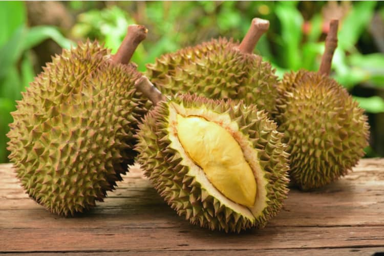 Durian-Fruit