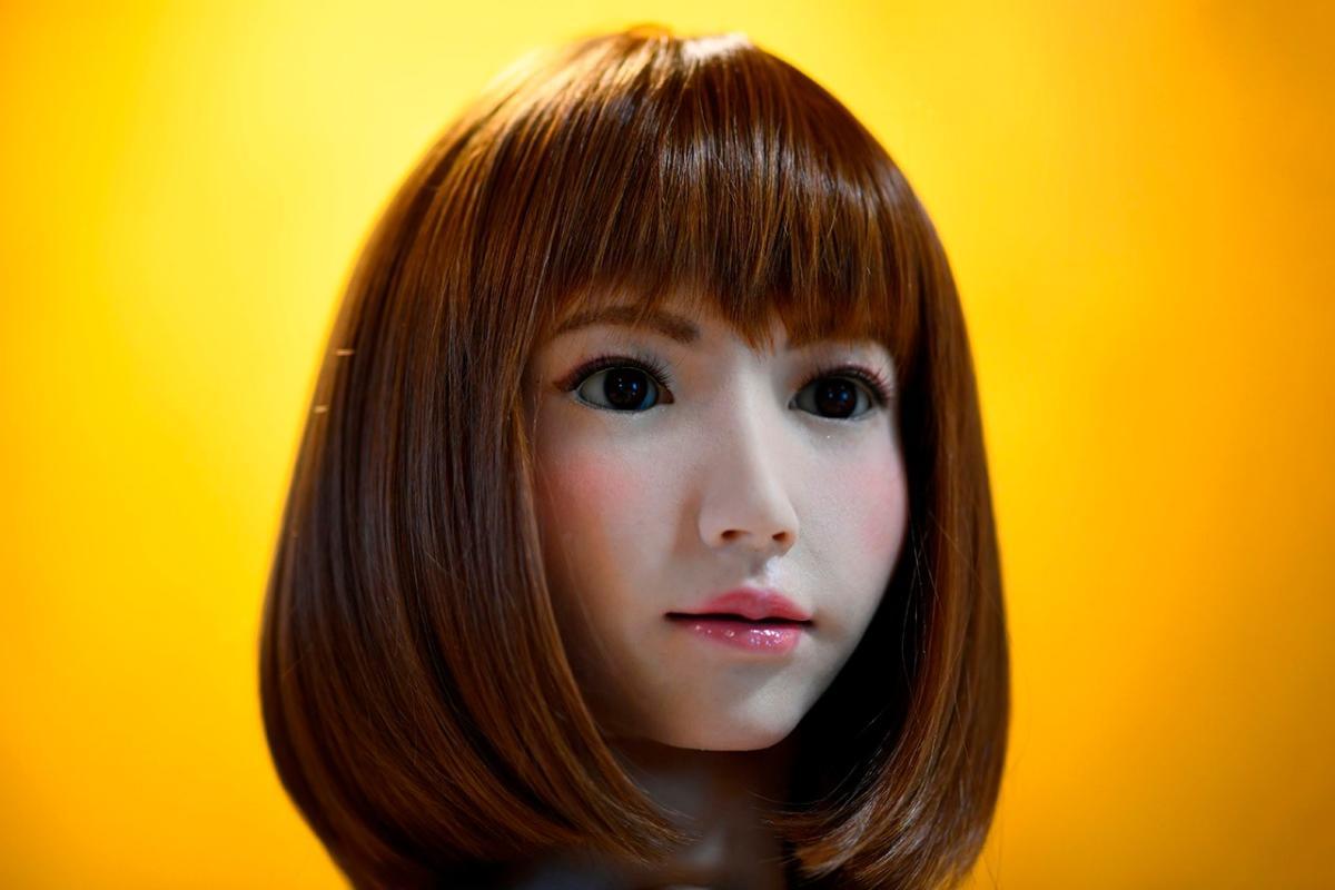 Erica Robot