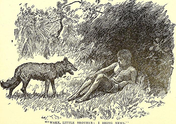 real-life-mowgli-dina-sanichar-5f1555ec8df50__700