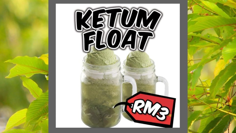 ketum-float-960×540