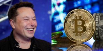 Elon bitcoin