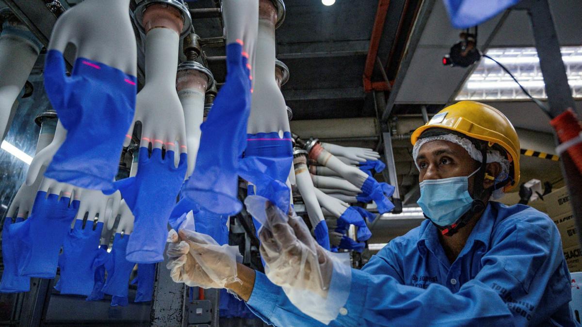 dividen top glove