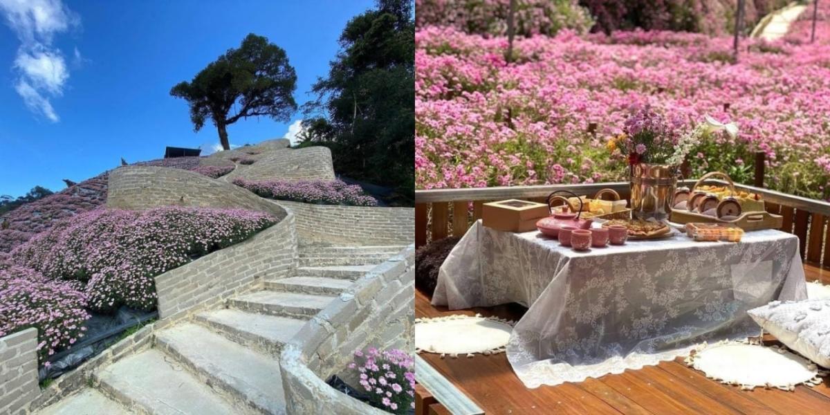 Persis Di Korea, 'Flora Park' Di Cameron Highlands Ini Bakal Jadi Tarikan Pelancong